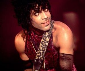 prince, sing, and america image