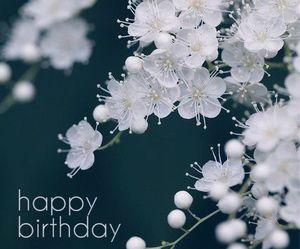 congratulations, happy birthday, and feliz aniversario image