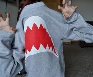 shark, sweater, and photography image