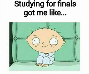 finals, school, and funny image