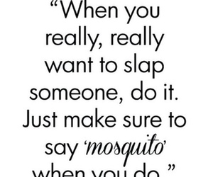 mosquito, slap, and funny image