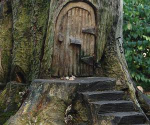 door, fairy, and forest image