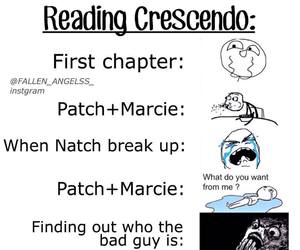 book, hush hush, and crescendo image
