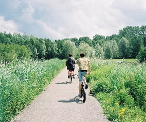 nature, summer, and bicycle image