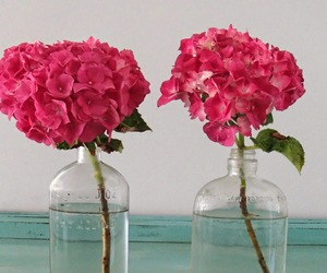 aqua, hydrangeas, and jars image