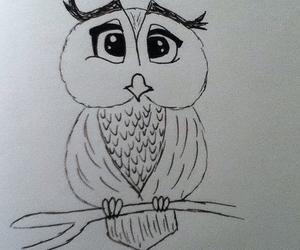 animal, girl, and owl image