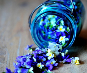 blue, flowers, and pretty things image