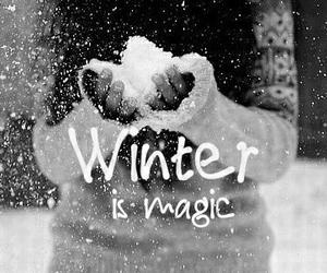 winter, magic, and snow image