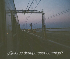 love, disappear, and frases image