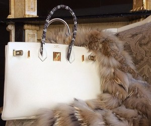 bag, luxury, and fur image
