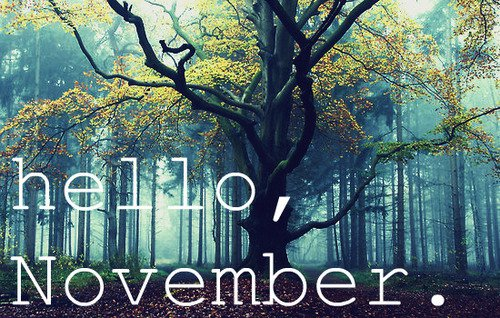 november and tree image