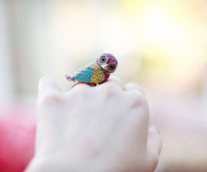 ring, owl, and bird image