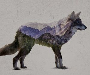 wolf, animal, and art image