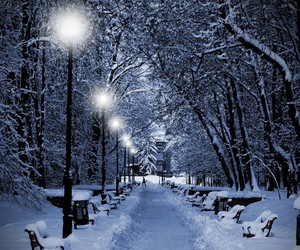 cold, night, and park image