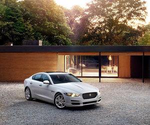 jaguar, luxury, and xe image