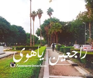 فيروز, شتاء, and هوى image
