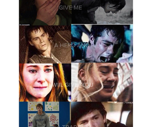 divergent, the maze runner, and tfios image