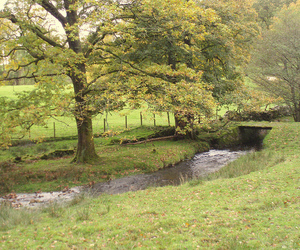 countryside, nature, and windermere image