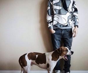 dog, matt, and matthew espinosa image
