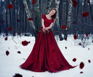 forest, girl, and red dress image