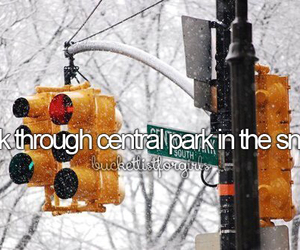 snow, Central Park, and winter image