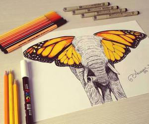 elephant, butterfly, and art image