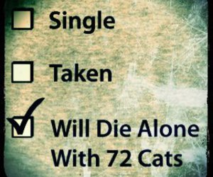 single, love, and cat image