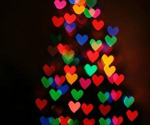 christmas lights, christmas tree, and colors image