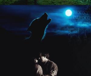werewolf, wolfstar, and friends image