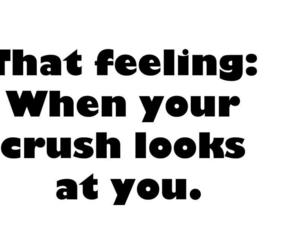 crush, quotes, and feeling image