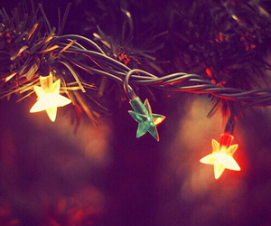 christmas, stars, and fairy lights image