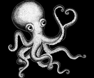 black and white, illustration, and octopus image