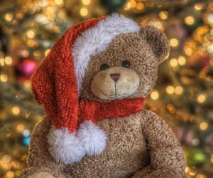 bear, christmas lights, and christmas tree image