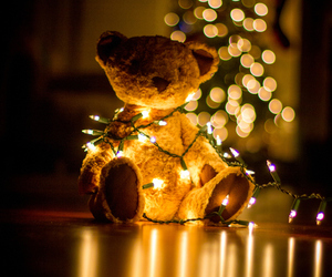bear, christmas, and christmas lights image