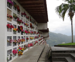 cementery, flowers, and heaven image