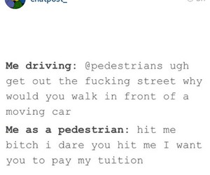 driving, funny, and pedestrian image