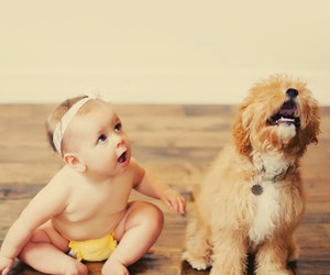 babies, friendship, and dog image