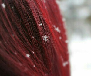 snow, red, and winter image