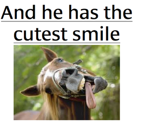 funny, horse, and smiling image