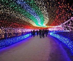 light, pretty, and amazing image