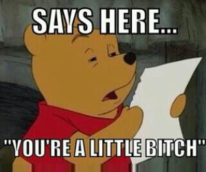 bitch, quote, and winnie the pooh image