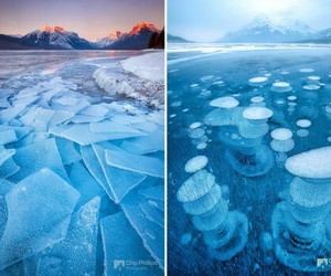 frozen, ice, and nature image