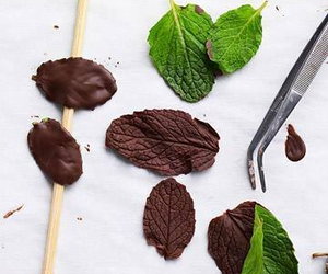 chocolate, green, and mint image