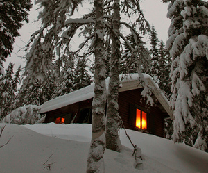 cabin, christmas, and pretty image