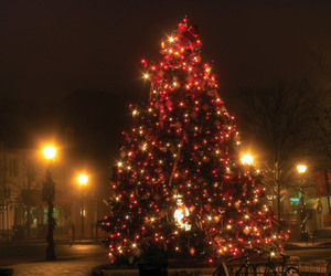 beautiful, chistmas, and winter image