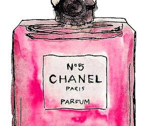 parfum, chanel, and paris image