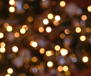 christmas, lights, and shine image