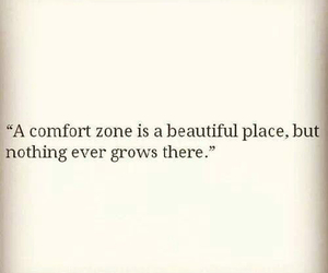quote, comfort zone, and life image