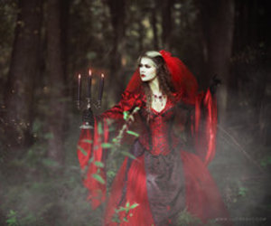 red, forest, and girl image