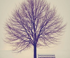 frozen, lonely, and tree image
